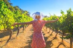 Woman in Australian Vineyard Royalty Free Stock Photo
