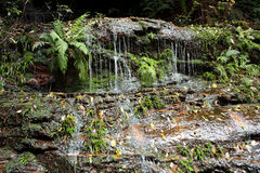 Australian Waterfall Cascades Royalty Free Stock Photo
