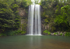 Australian waterfall Millaa Millaa Falls, North Queensland, Aust Royalty Free Stock Photography