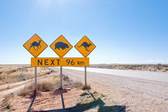 Australian wildlife crossing sign. Typical Australian roadsign with Camel, Wombat and Kangaroo at Nullarbor Plain, Australia Stock Images