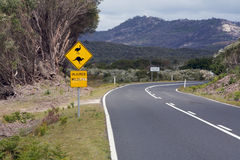 Australian wildlife road sign, road trip. Australian wildlife road signs kangaroo and wildlife on a road trip surrounded by mountains and trees Royalty Free Stock Image