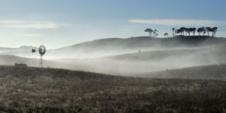 Australian windmill in fog Royalty Free Stock Images