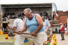 Australian wood cutter Darren Hayden of NSW  at the Royal Adelaide Show, September 2014. Stock Photography