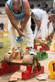 Australian wood cutter Darren Hayden of NSW at the Royal Adelaide Show, September 2014. royalty free stock photo