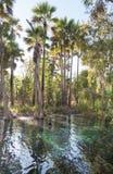 Australiano Hot Springs Foto de Stock