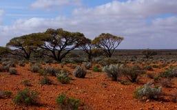 Australie centrale aride Photos libres de droits