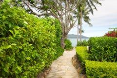 Australie d'île de Hayman Image libre de droits