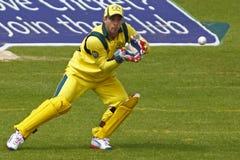 Australie 2012 de l'Angleterre v un 4ème international de jour Photographie stock libre de droits