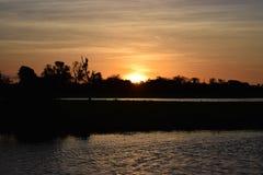 Australie de marais de Sunswet Photographie stock libre de droits