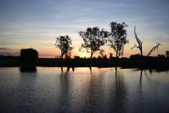 Australie de marais de Sunswet Photos libres de droits
