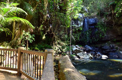 Australie de Tamborine la Gold Coast Queensland de bâti Photos libres de droits