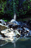 Australie de Tamborine la Gold Coast Queensland de bâti Photo libre de droits