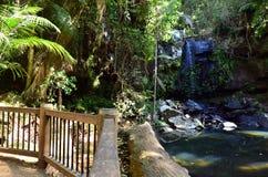 Australie de Tamborine la Gold Coast Queensland de bâti Photos libres de droits