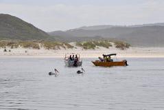 Australie occidentale de pêche Photographie stock