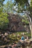 Australie, territoire du nord, parc national de Litchfiel photographie stock