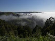 Australien-Bauernhof morgens Lizenzfreie Stockfotos