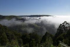 Australien-Bauernhof morgens Lizenzfreie Stockbilder