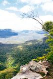 Australien. Blåttbergnationalpark Royaltyfri Fotografi
