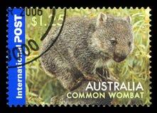 AUSTRALIEN - Briefmarke lizenzfreie stockfotografie
