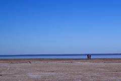 Australien central eyre lake royaltyfria bilder
