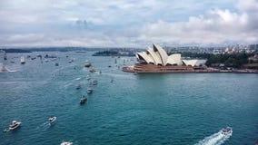 Australien dagberömmar i Sydney Harbour arkivfilmer