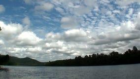 Australien Daintree nationalpark stock video