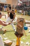 Australien et coupeurs en bois de NZ chez Adelaide Show royale, septembre 2014 Image stock