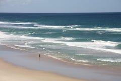 Australien Gold Coast Arkivbilder