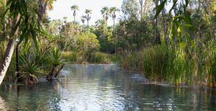 Australien Hot Springs Photo stock
