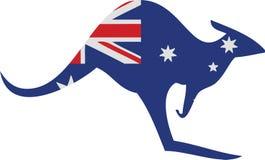 Australien känguru Arkivfoto