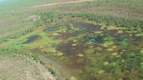 Australien, kakadu Nationalpark, Flug über dem Naturpark, Draufsicht des Flusses, Sümpfe und Pfützen, billabong stock video
