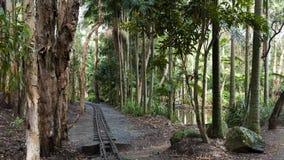 Australien kustguld queensland Arkivbilder