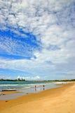 Australien kustsolsken Arkivbilder