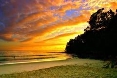 Australien kustsolsken Royaltyfria Foton