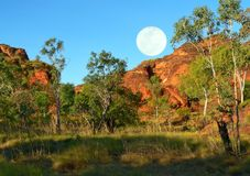 Australien landscape and moon. Rocks and trees with the moon Stock Photos
