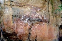 Australien nordligt territorium Royaltyfri Fotografi