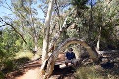 Australien, Nordterritorium, Hinterland lizenzfreie stockfotos