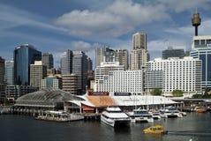 Australien, NSW, Σίδνεϊ, Στοκ εικόνες με δικαίωμα ελεύθερης χρήσης