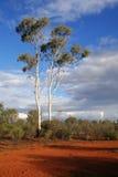 Australien outback Royaltyfria Foton