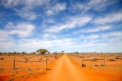 Australien outback väg Fotografering för Bildbyråer