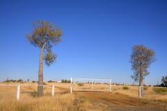 Australien Queensland Outback stationsingång Royaltyfri Bild