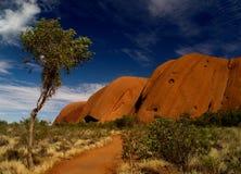 Australien s uluru Royaltyfri Foto