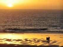 Australien solnedgång Arkivfoto