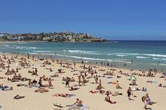 Australien strandbondi sydney Arkivbild