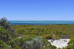 Australien WA, Cervantes, kust Royaltyfri Foto