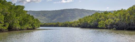 Australiensisk flod Royaltyfria Bilder