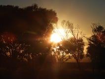 australiensisk solnedgång Arkivfoto