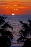 australiensisk solnedgång Arkivbild