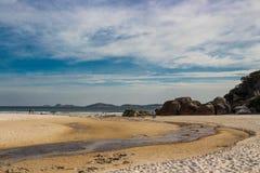 australiensisk strand Royaltyfri Fotografi