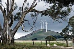 australiensisk windfarm Royaltyfria Bilder